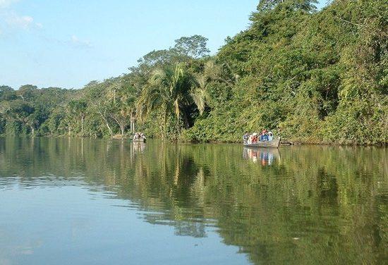 Selva Baja u Omagua