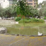 inkaico-parque-el-olivar