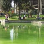 parque-de-la-exposicion-laguna