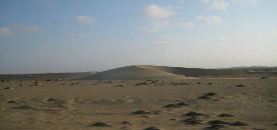 inkaico-desierto-sechura