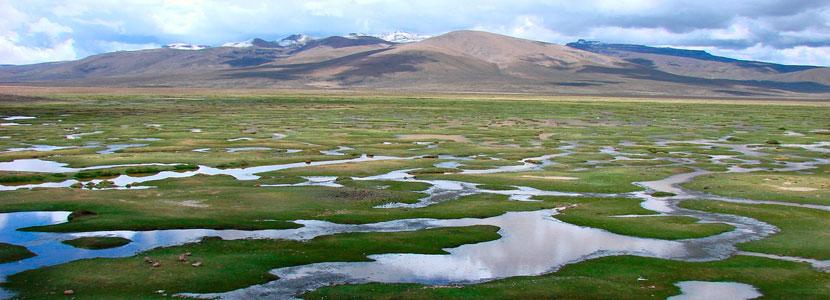 inkaico-Reserva-Nacional-Salinas-Aguada-Blancas